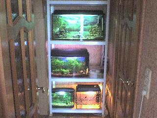 Стеллажи для аквариума